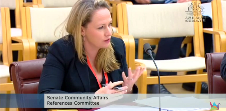 Michelle Stewart presents to Senate enquiry